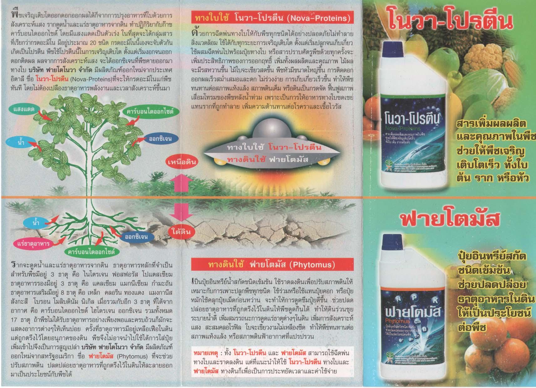 แผ่นพับรายละเอียดฟายโตโนวา-โปรตีน และฟายโตมัส